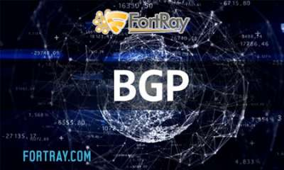 Instructor-Led Hands-on Advance BGP Boot Camp